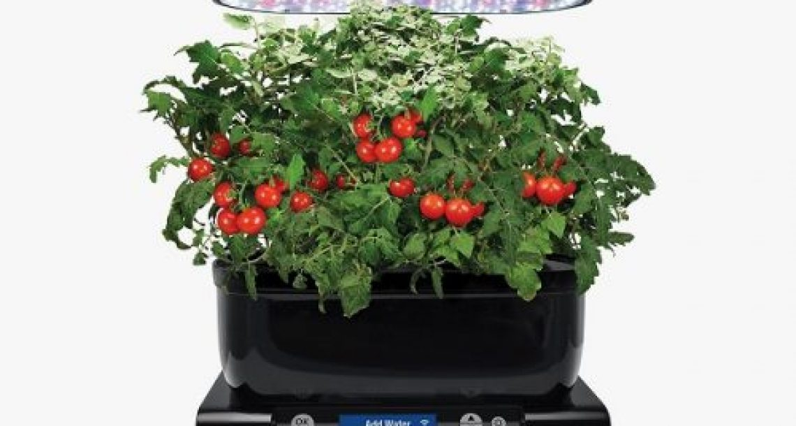 $500 AeroGarden Sweepstakes
