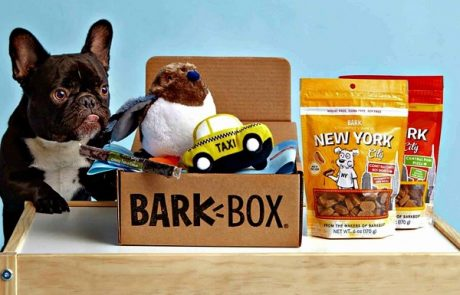 12-Month Subscription to BarkBox.com Sweepstakes